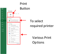 Print Preview & Printing To preview your worksheet before printing Click on the File Menu and click on Print The following screen is displayed, showing a preview of your workbook to the right of the