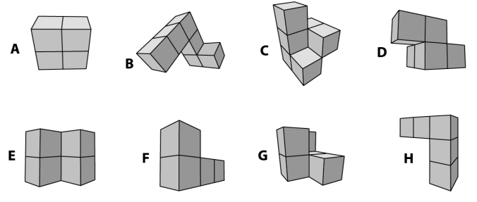 Example: The student is show a 3 D shape and asked to fold it (in his mind) and the select the resulting shape from the options below.