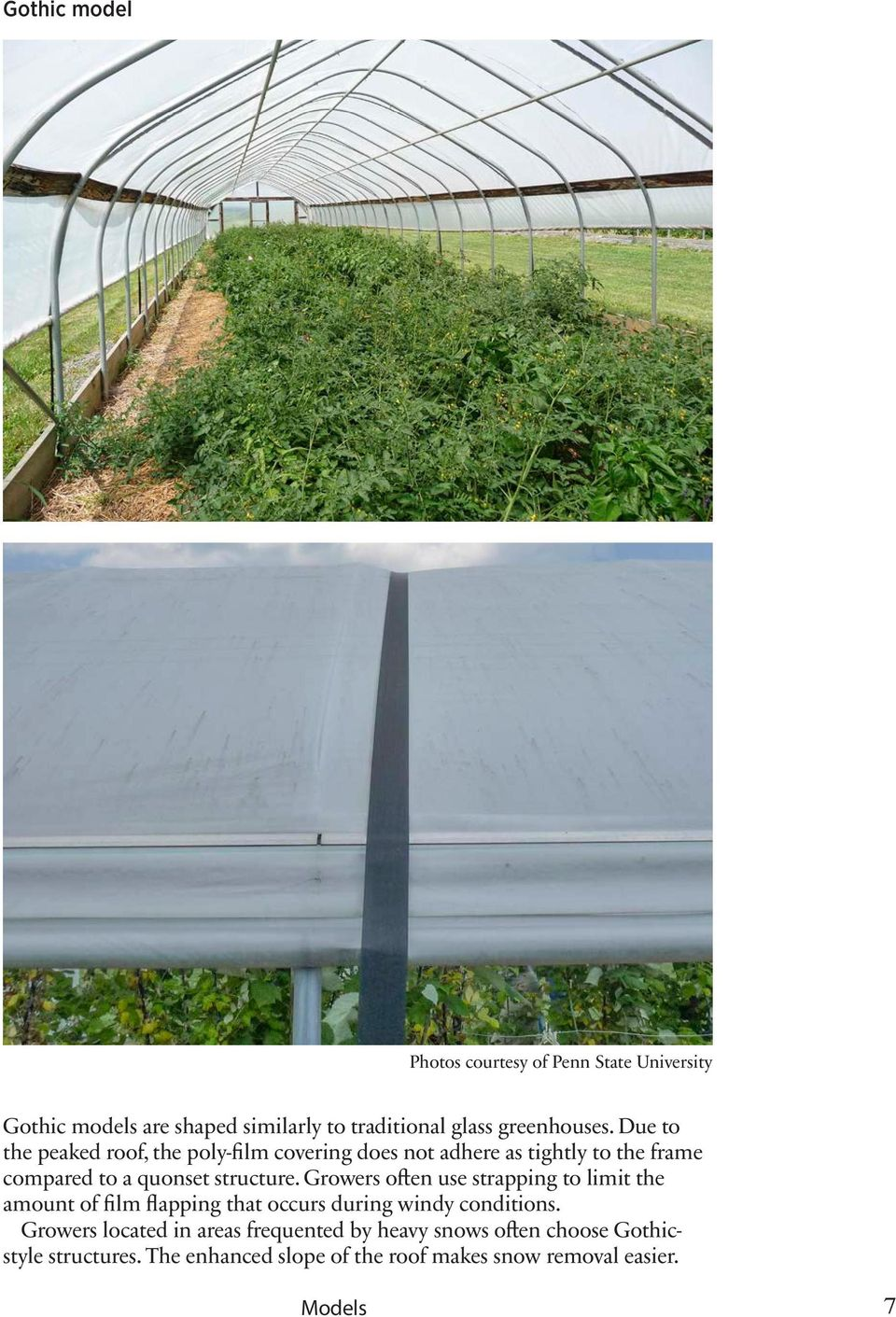 Growers often use strapping to limit the amount of film flapping that occurs during windy conditions.