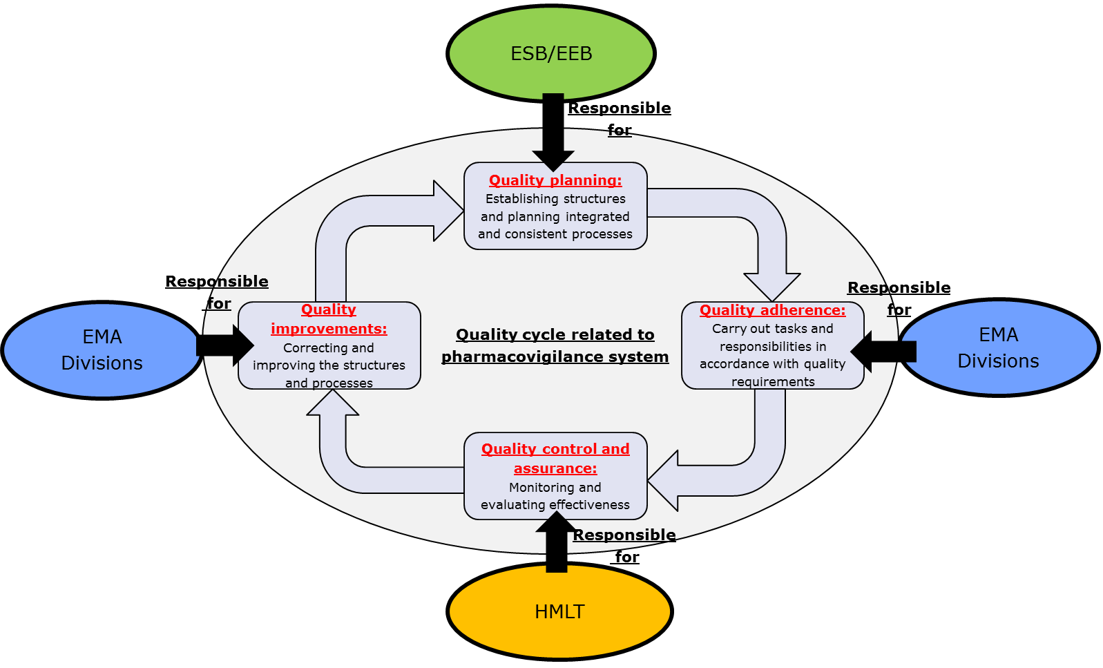 4.3. EMA management responsibility in the quality cycle of the pharmacovigilance system Figure 5 displays EMA leadership responsibility in the quality cycle related to the pharmacovigilance system.