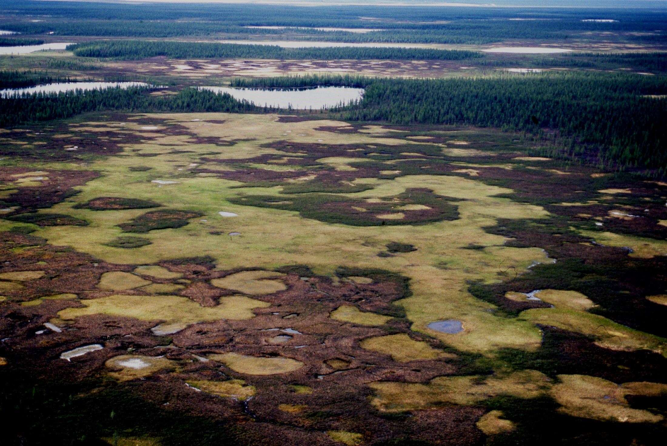 Russia s changing Arctic environment Climate change is affecting northern areas of the world.