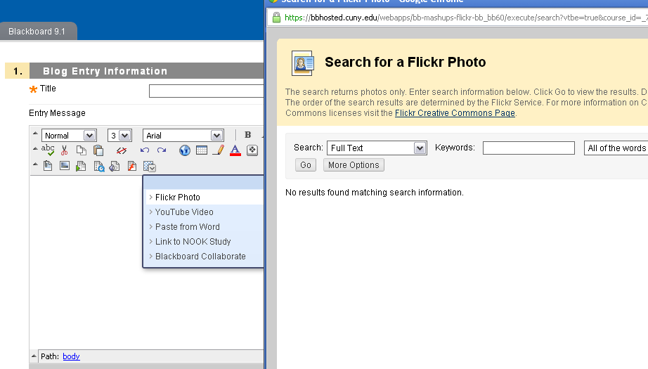 This selection is used to insert a Flickr Photo, YouTube video, allows you to copy directly from Microsoft Word, allows you to insert a link to a Barnes and Noble e-textbook resources, and lastly, it