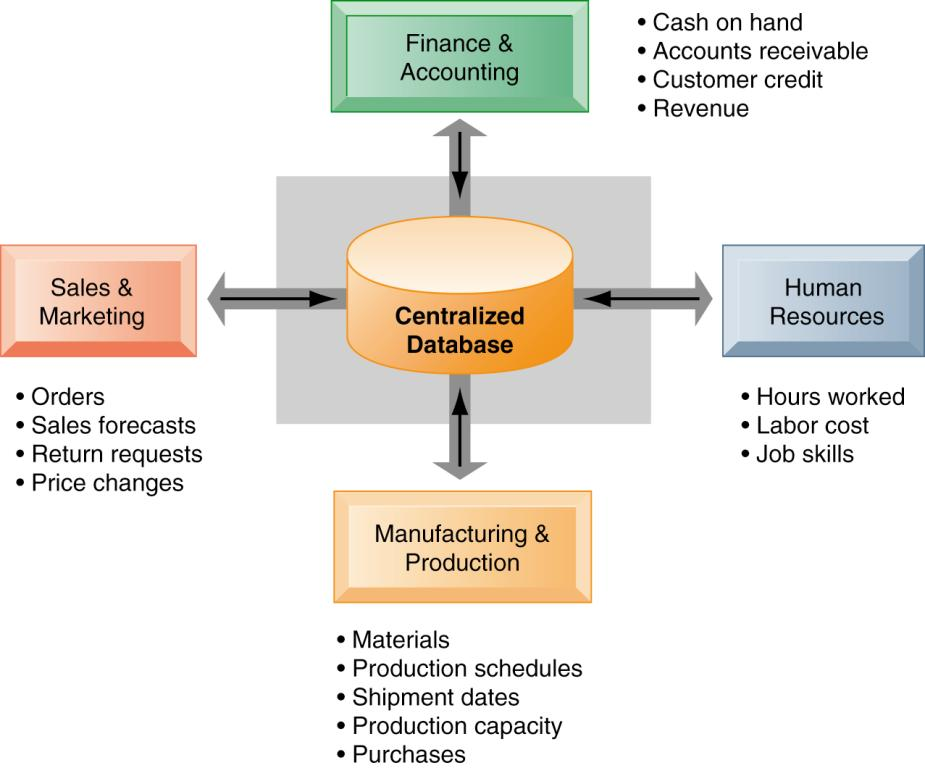 Enterprise Systems How Enterprise Systems Work Enterprise systems feature a set of integrated software modules and a central database that