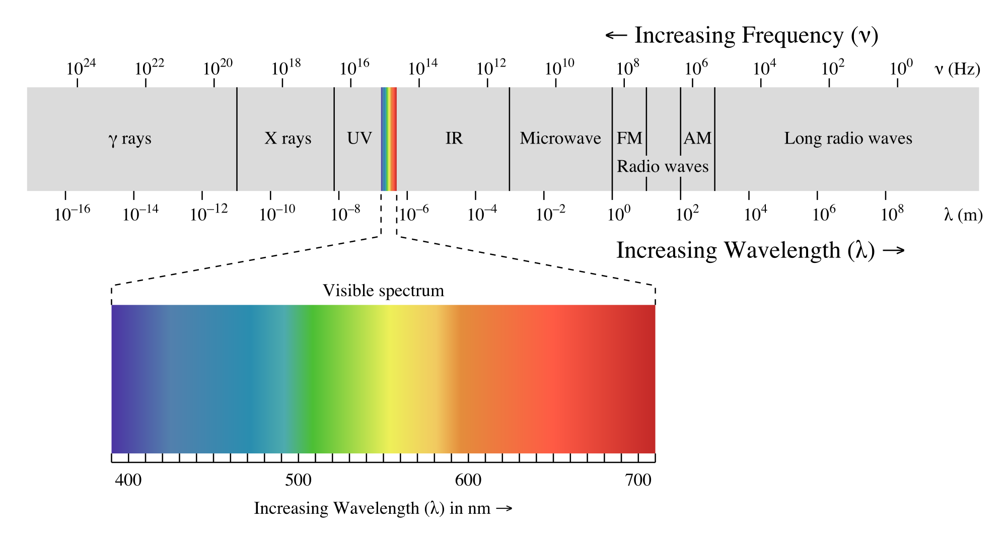 waves at the right side have the longest wavelengths and least energy.