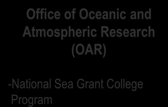 NOAA and LNG: NOAA s Line Offices National Marine Fisheries Service (NMFS) -Office of Habitat Protection -Office of Protected Resources -Regional Offices and Regional Science Centers National Ocean
