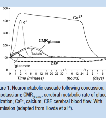 Physiology of Concussion (Hovda et al.