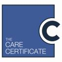 The Care Certificate Standards