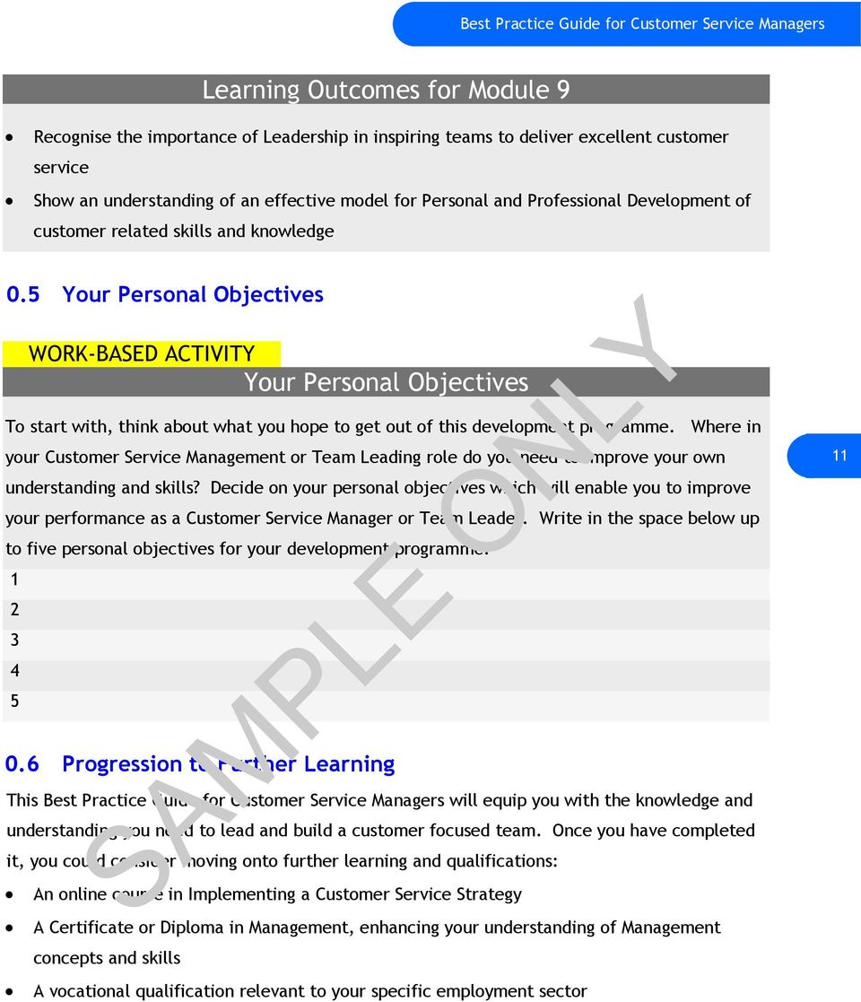 best practice guide sample only for customer service managers 5 your personal objectives work based activity your personal objectives to start think 13 1 managers and customer service