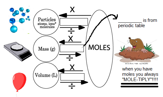 Notes for chapter 10: 1. What is a mole? 2. What units can a mole be converted to/from: a. b. c. MOLE/PARTICLE (MOLECULES AND ATOMS) 3. How many molecules are in a mole? 4.