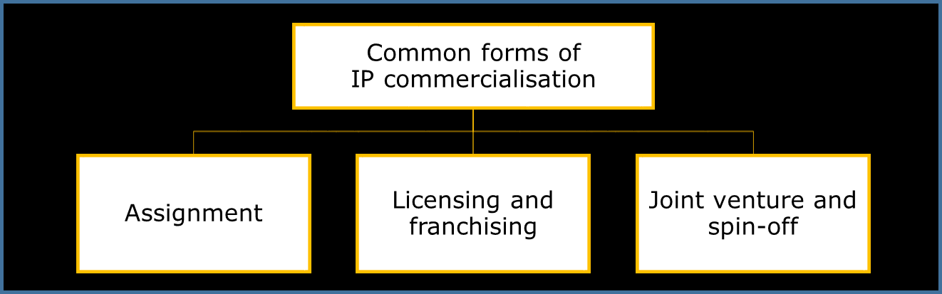 The financial success of any IP exploitation will certainly depend on the choice of the most appropriate commercialisation form, which should be based on: The organisation s business objectives The