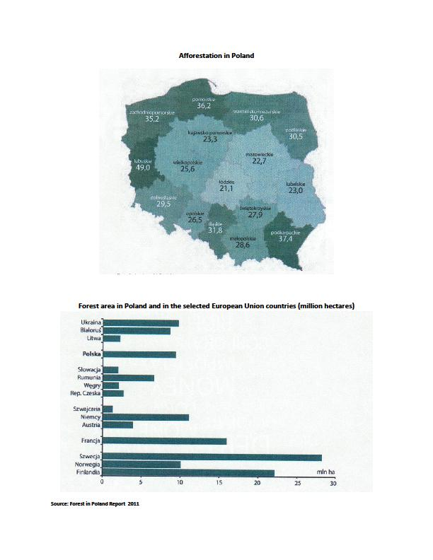 Forest in Poland Tree structure in Poland (%) Birch 6 % Alder 5 % European