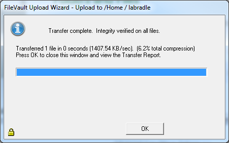 Once the file has uploaded successfully, the Wizard will show the following.