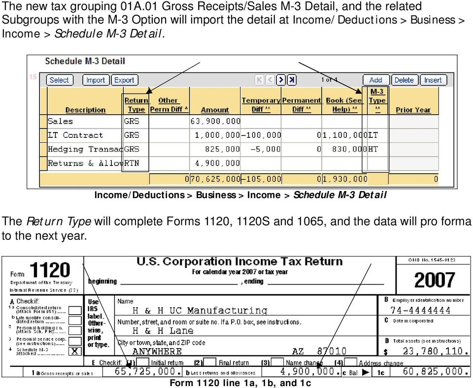 the detail at Income/Deductions > Business > Income > Schedule M-3 Detail.