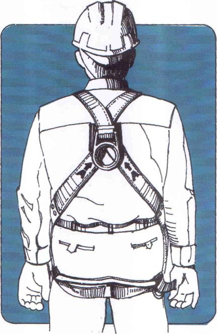 Full-Body Harness It consists of straps passed over the shoulders, across the chest, and around the legs.