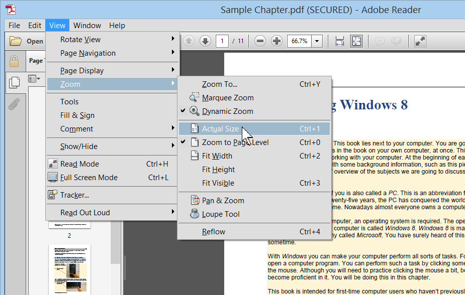 16 Now you can see that the Adobe Reader window consists of two sections, or frames.