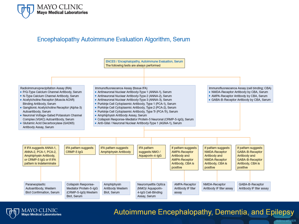 I will now review the serum and CSF profiles for autoimmune encephalopathy. As mentioned, these profiles are very similar for autoimmune dementia and epilepsy, so I will not review those here.