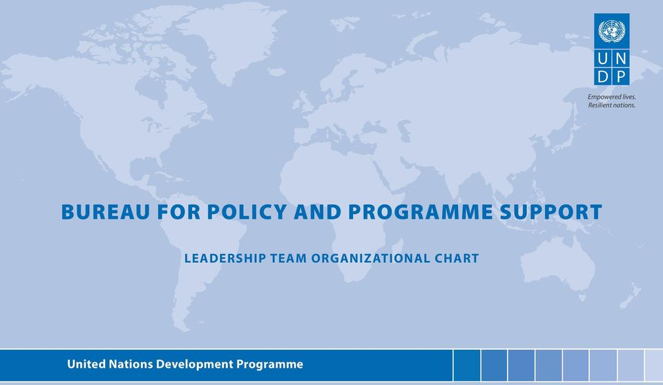 BUREAU FOR POLICY AND PROGRAMME SUPPORT