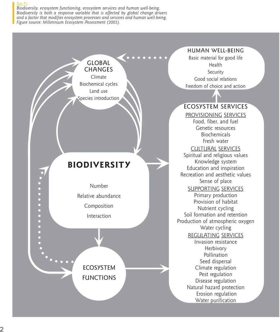 Figure source: Millennium Ecosystem Assessment (2005).
