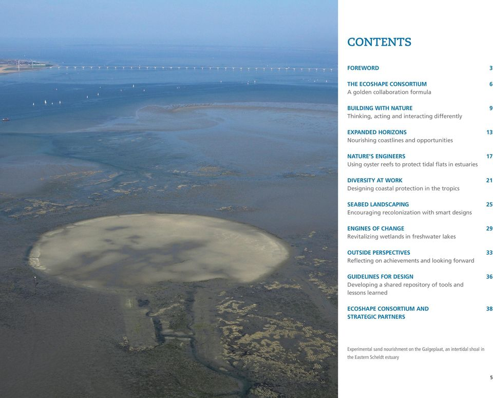recolonization with smart designs ENGINES OF CHANGE 29 Revitalizing wetlands in freshwater lakes OUTSIDE PERSPECTIVES 33 Reflecting on achievements and looking forward GUIDELINES FOR DESIGN 36