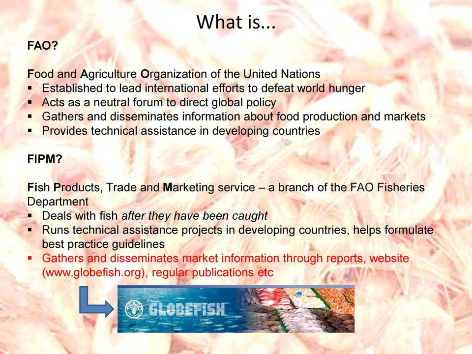 policy Gathers and disseminates information about food production and markets Provides technical assistance in developing countries FIPM?