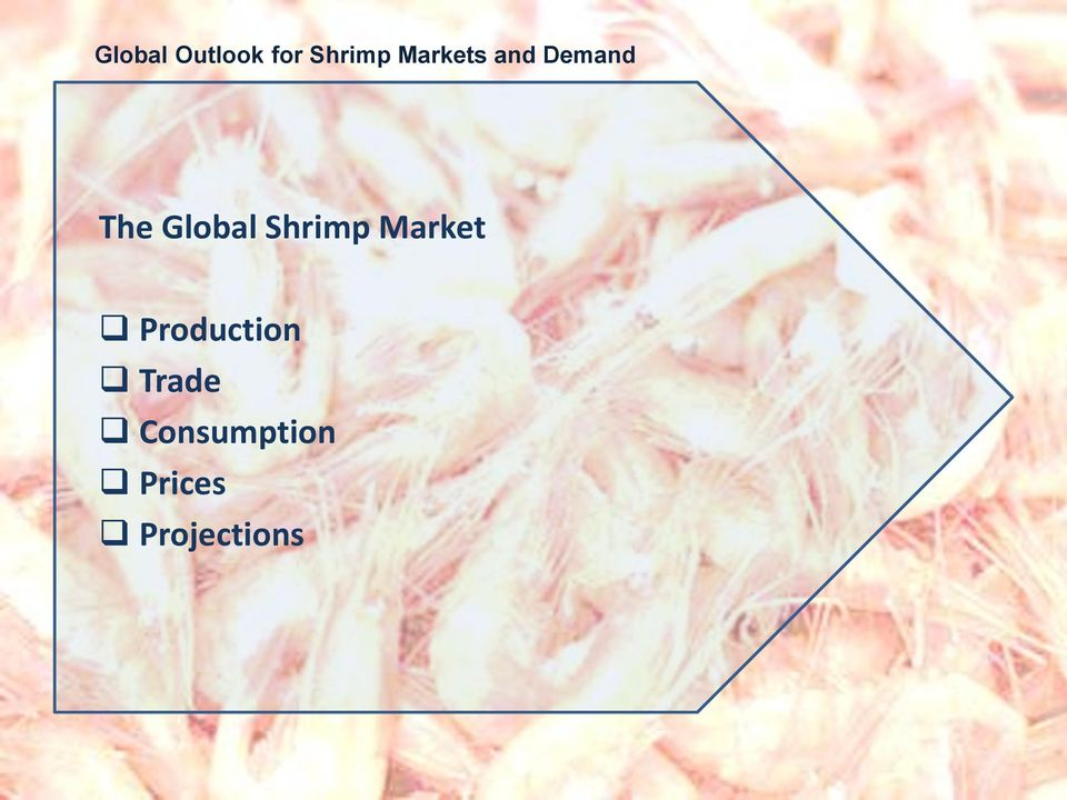 Shrimp Market Production