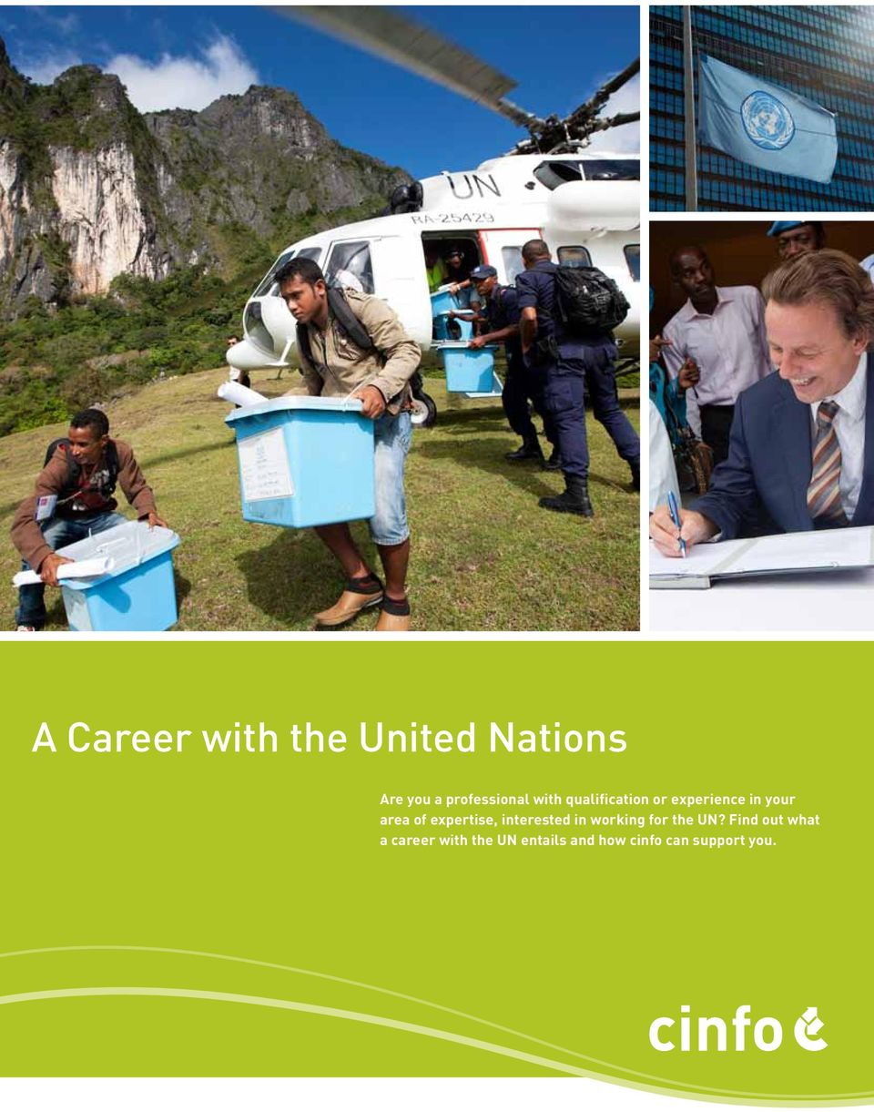 expertise, interested in working for the UN?