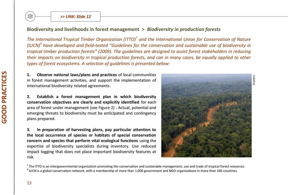 The guidelines are designed to assist forest stakeholders in reducing their impacts on biodiversity in tropical production forests, and can in many cases, be equally applied to other types of forest
