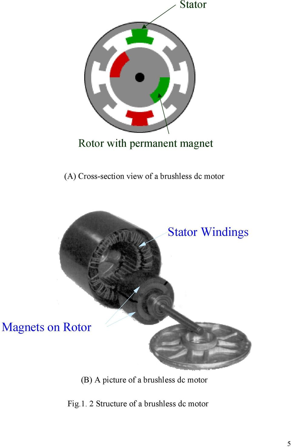 Windings Magnets on Rotor (B) A picture of a