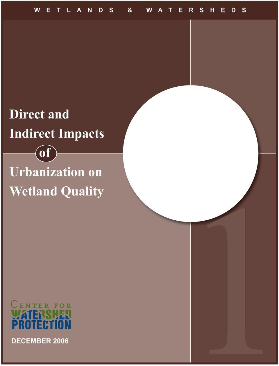Indirect Impacts of