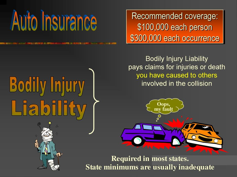 $300,000 each occurrence Bodily Injury Liability pays claims for