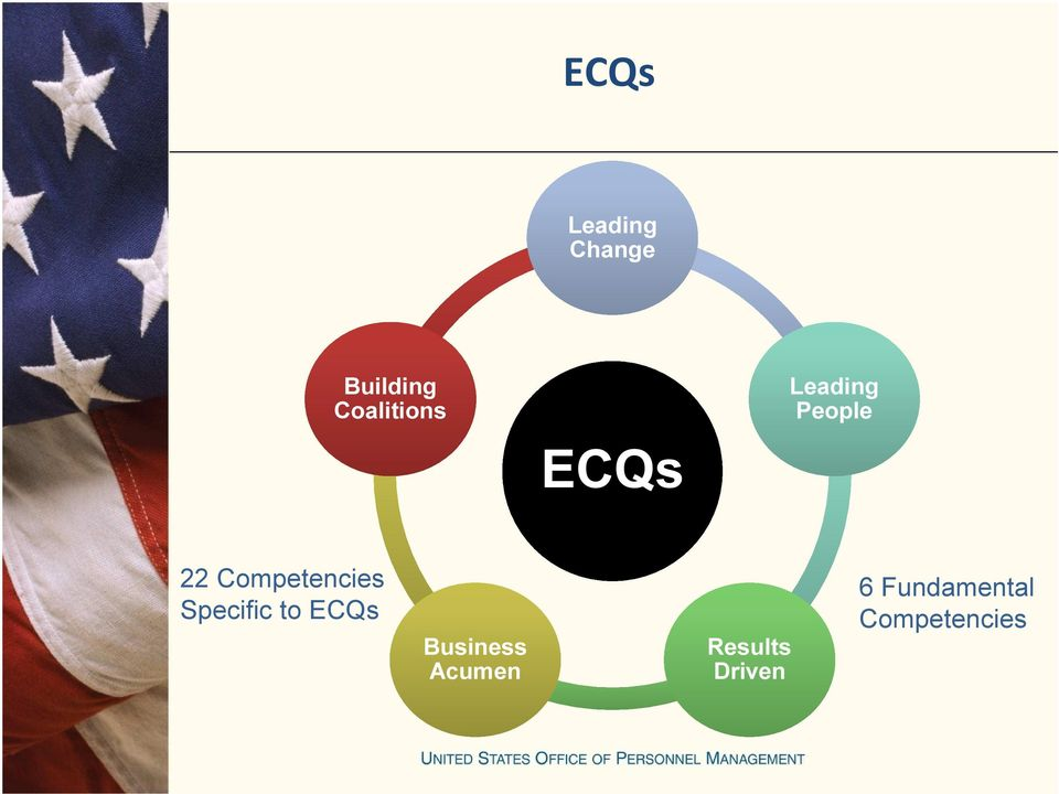Competencies Specific to ECQs