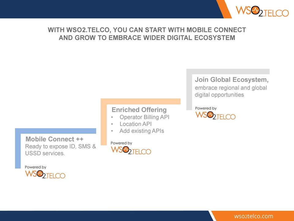 DIGITAL ECOSYSTEM Join Global Ecosystem, embrace regional and global