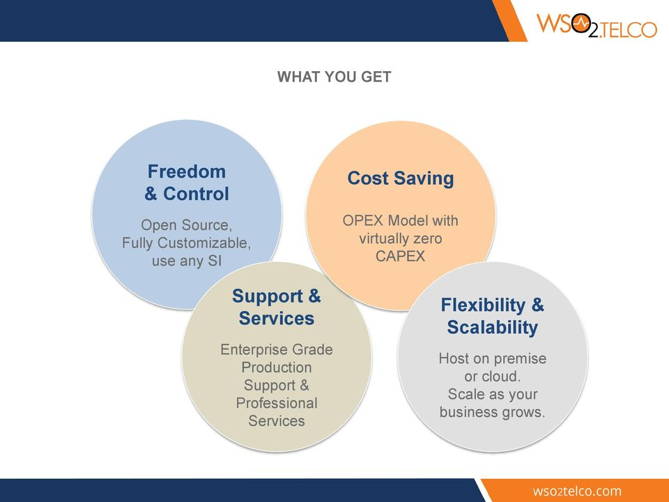 Professional Services Cost Saving OPEX Model with virtually zero CAPEX
