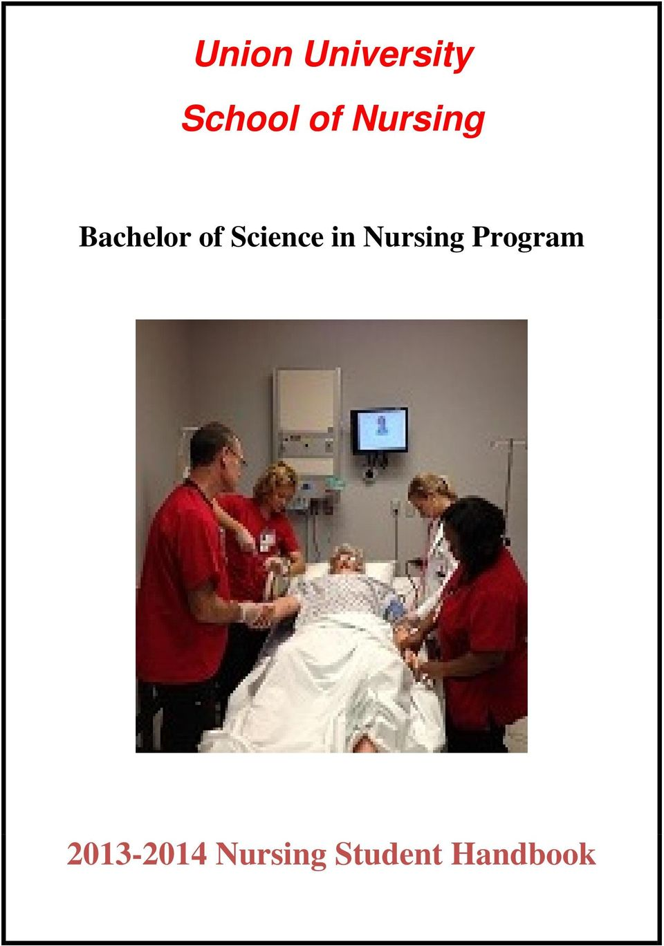 Science in Nursing Program