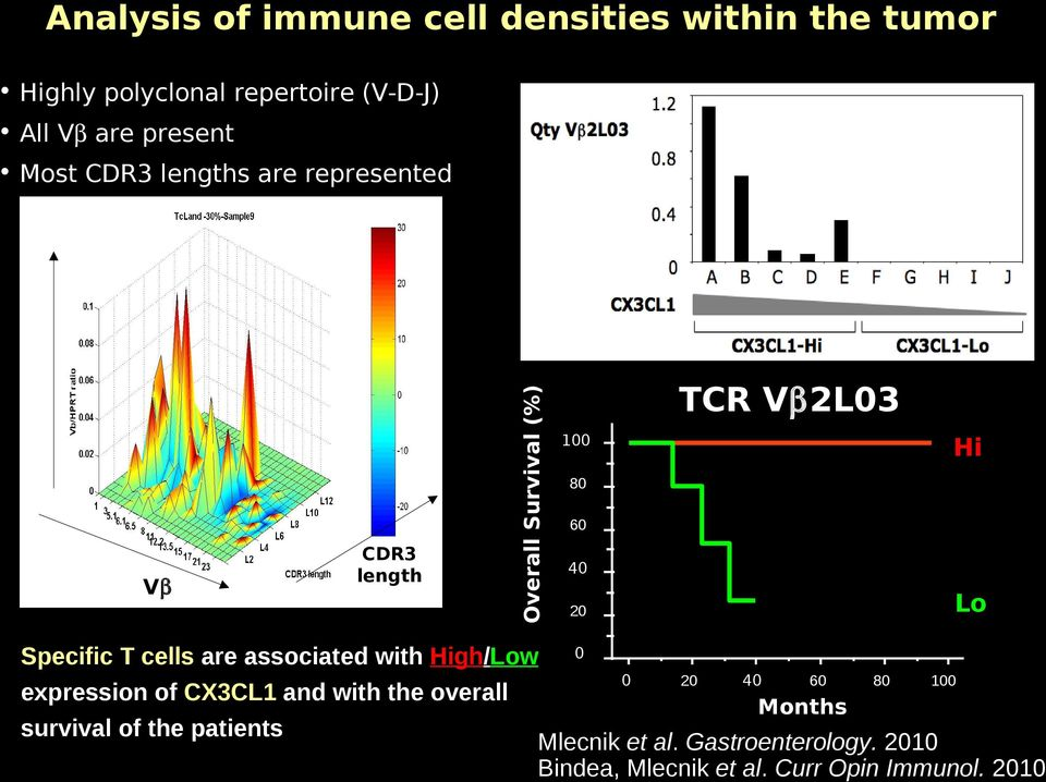 Specific T cells are associated with High/Low 0 0 20 40 60 80 100 expression of CX3CL1 and with the overall