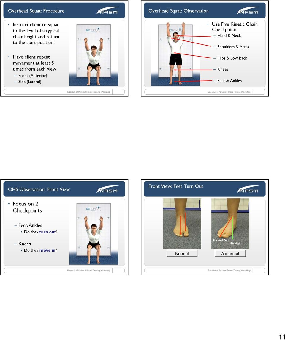 Five Kinetic Chain Checkpoints Head & Neck Shoulders & Arms Hips & Low Back Knees Feet & Ankles OHS Observation: Front View