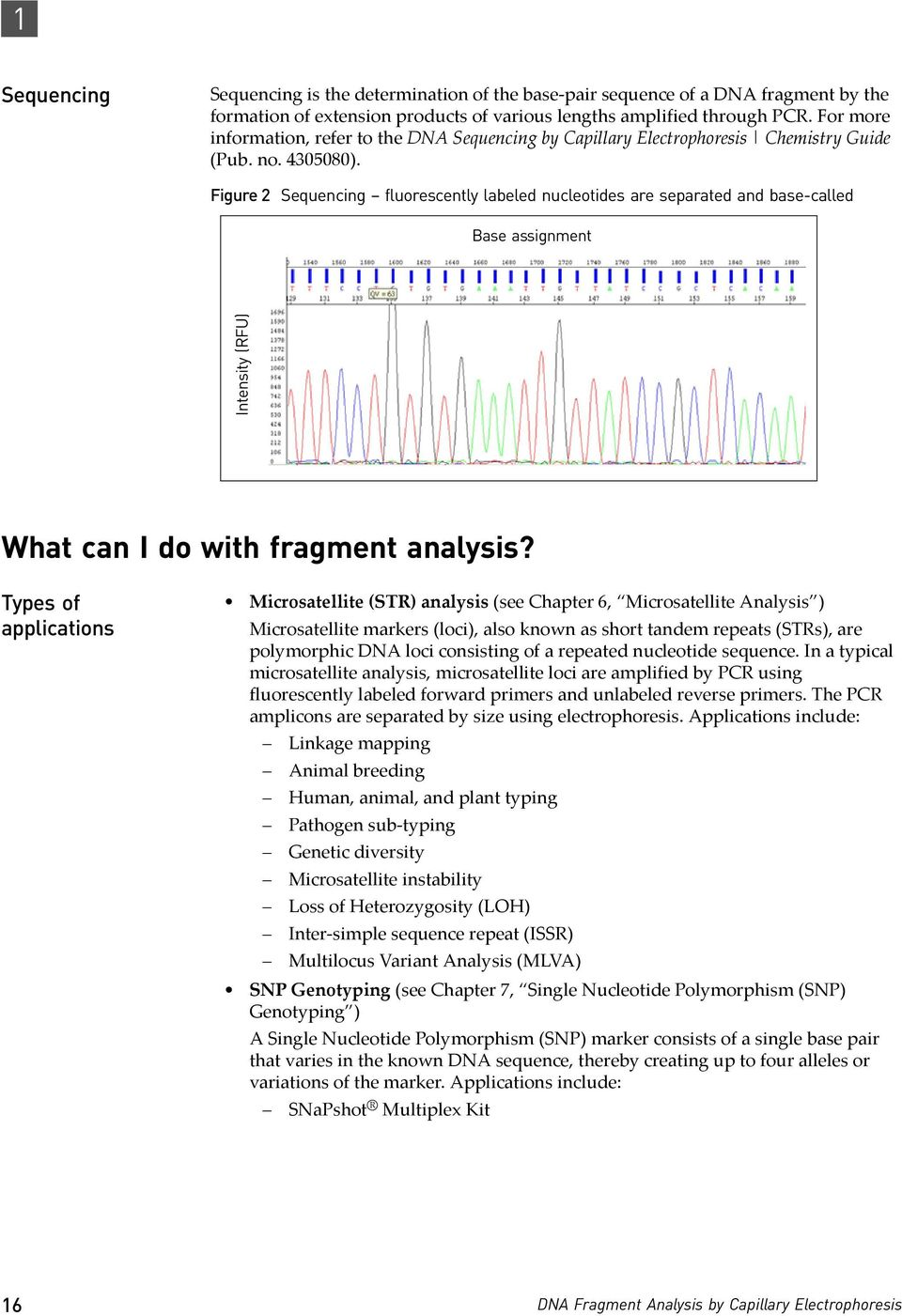 Figure 2 Sequencing fluorescently labeled nucleotides are separated and base-called Base assignment Intensity (RFU) What can I do with fragment analysis?
