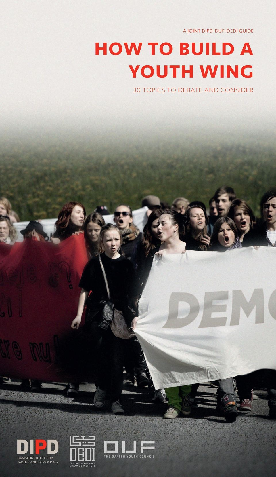 parties and democracy The Danish Youth Council HOW TO