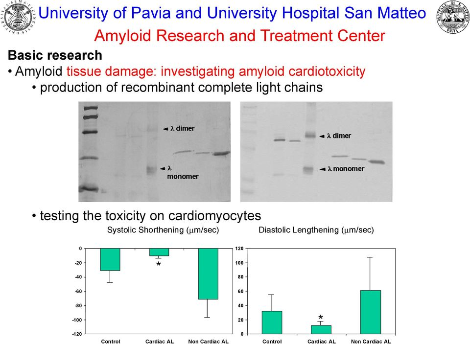 testing the toxicity on cardiomyocytes y Systolic Shorthening ( m/sec) Diastolic Lengthening ( m/sec) 0