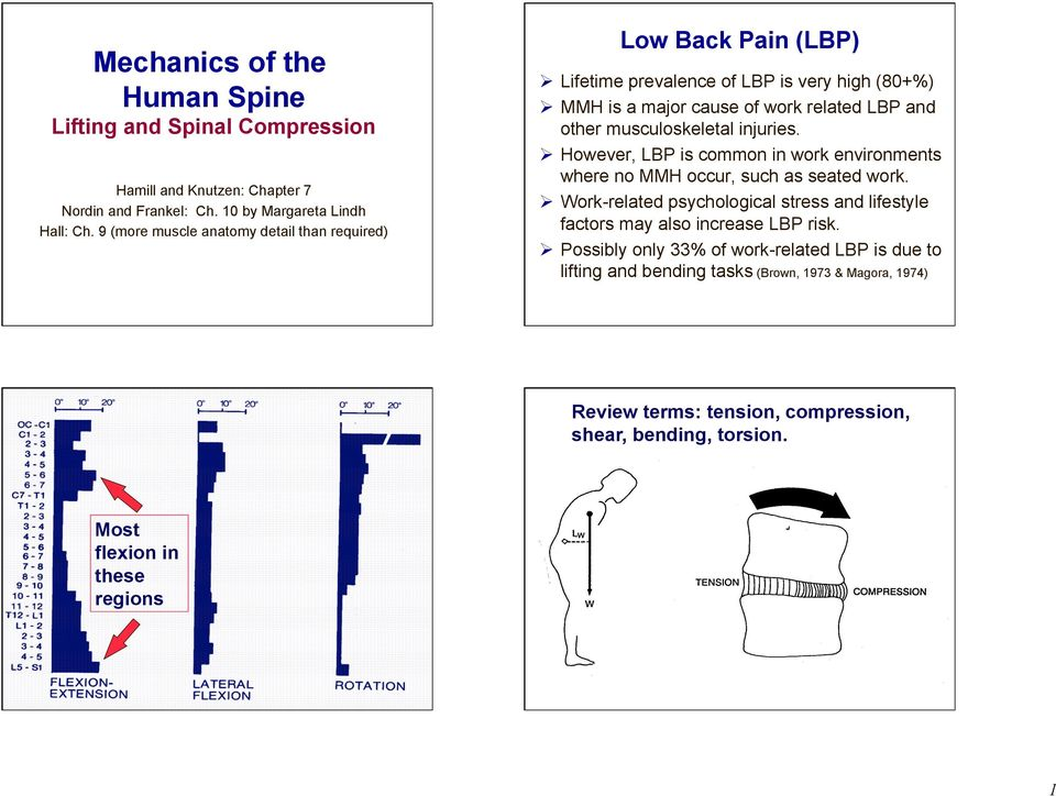 musculoskeletal injuries. However, LBP is common in work environments where no MMH occur, such as seated work.