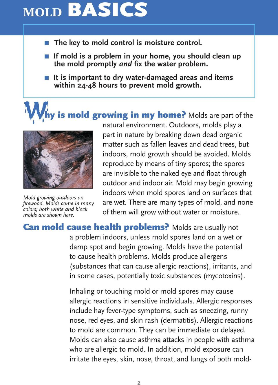 Outdoors, molds play a part in nature by breaking down dead organic matter such as fallen leaves and dead trees, but indoors, mold growth should be avoided.