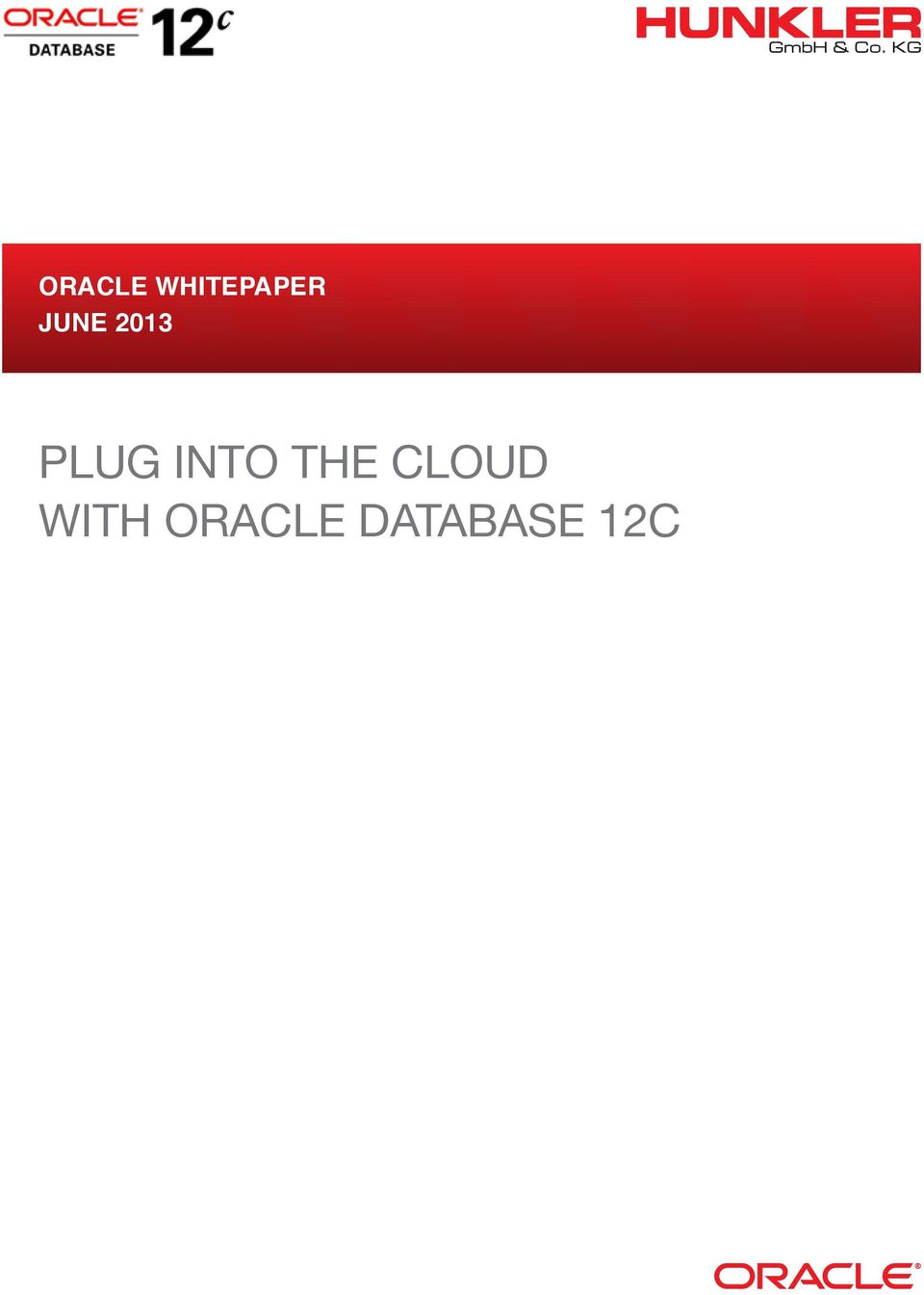 Oracle Multitenant plug into