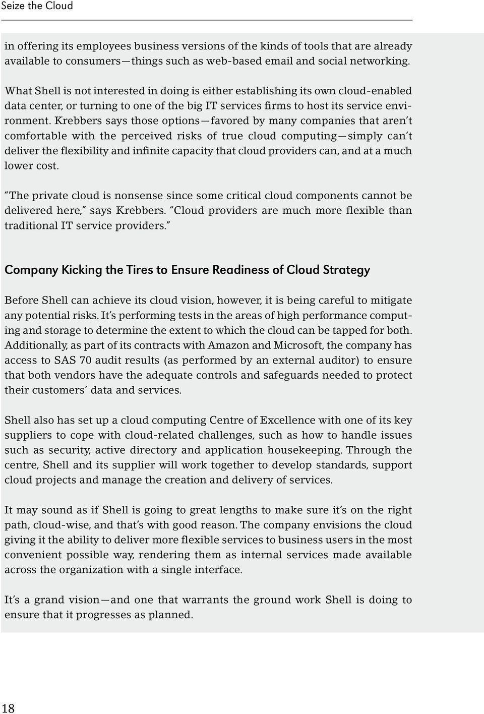 Krebbers says those options favored by many companies that aren t comfortable with the perceived risks of true cloud computing simply can t deliver the flexibility and infinite capacity that cloud