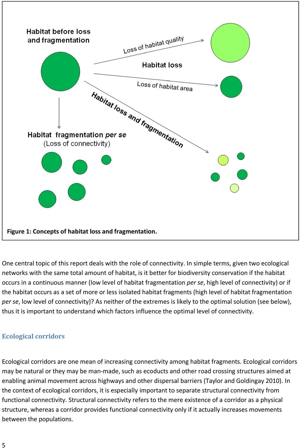 fragmentation per se, high level of connectivity) or if the habitat occurs as a set of more or less isolated habitat fragments (high level of habitat fragmentation per se, low level of connectivity)?