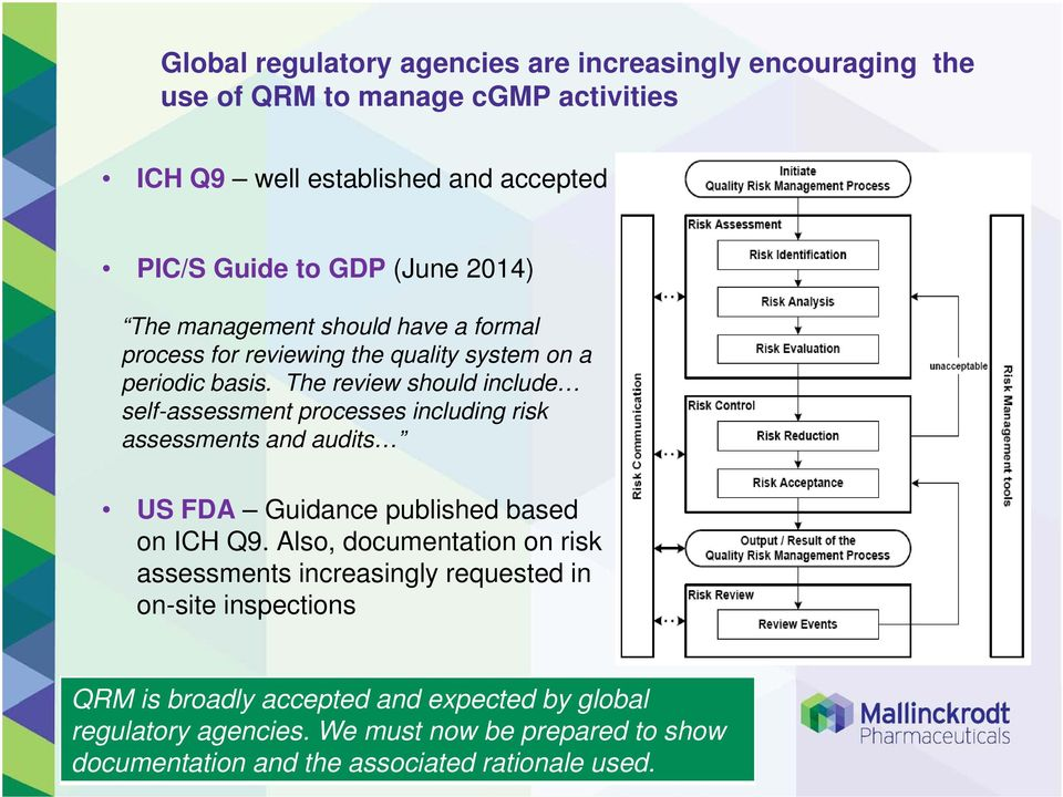 The review should include self-assessment processes including risk assessments and audits US FDA Guidance published based on ICH Q9.