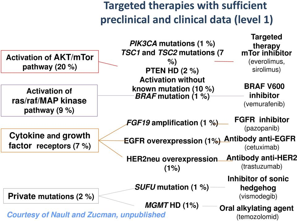(1%) HER2neu overexpression (1%) SUFU mutation (1 %) Private mutations (2 %) MGMT HD (1%) Courtesy of Nault and Zucman, unpublished Targeted therapy mtor inhibitor (everolimus, sirolimus)