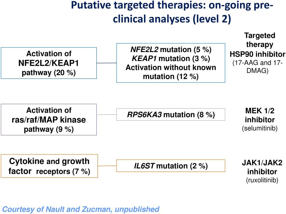 17- DMAG) Activation of ras/raf/map kinase pathway (9 %) RPS6KA3 mutation (8 %) MEK 1/2 inhibitor (selumitinib) Cytokine