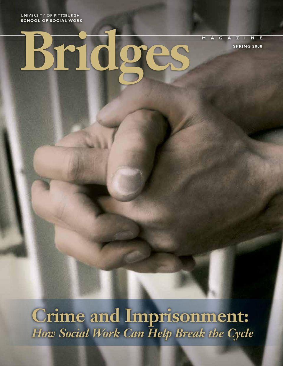 SPRING 2008 Crime and Imprisonment:
