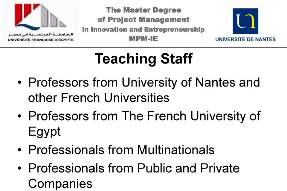 French University of Egypt Professionals from