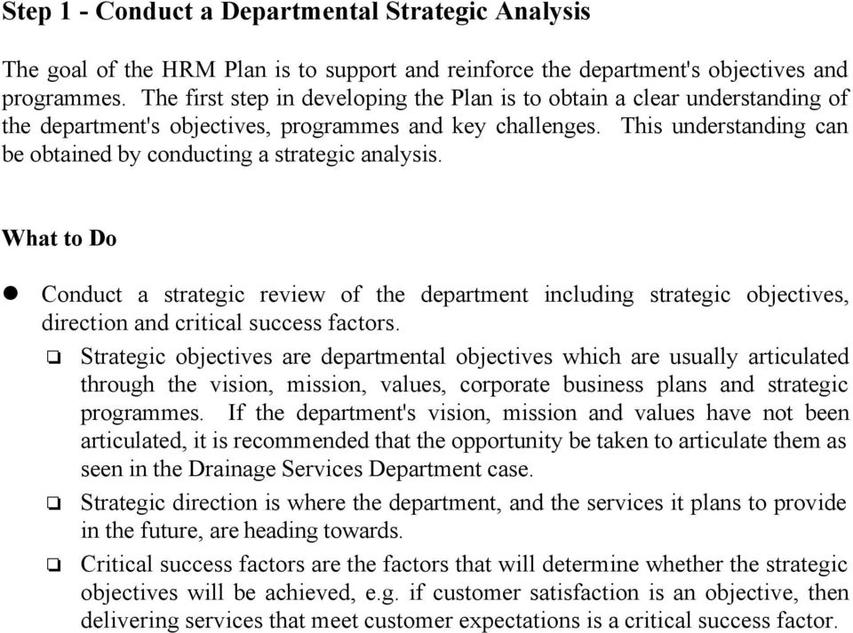 This understanding can be obtained by conducting a strategic analysis. What to Do Conduct a strategic review of the department including strategic objectives, direction and critical success factors.